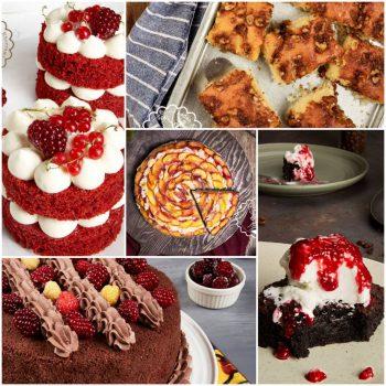 پکیج کیک های کافه ای